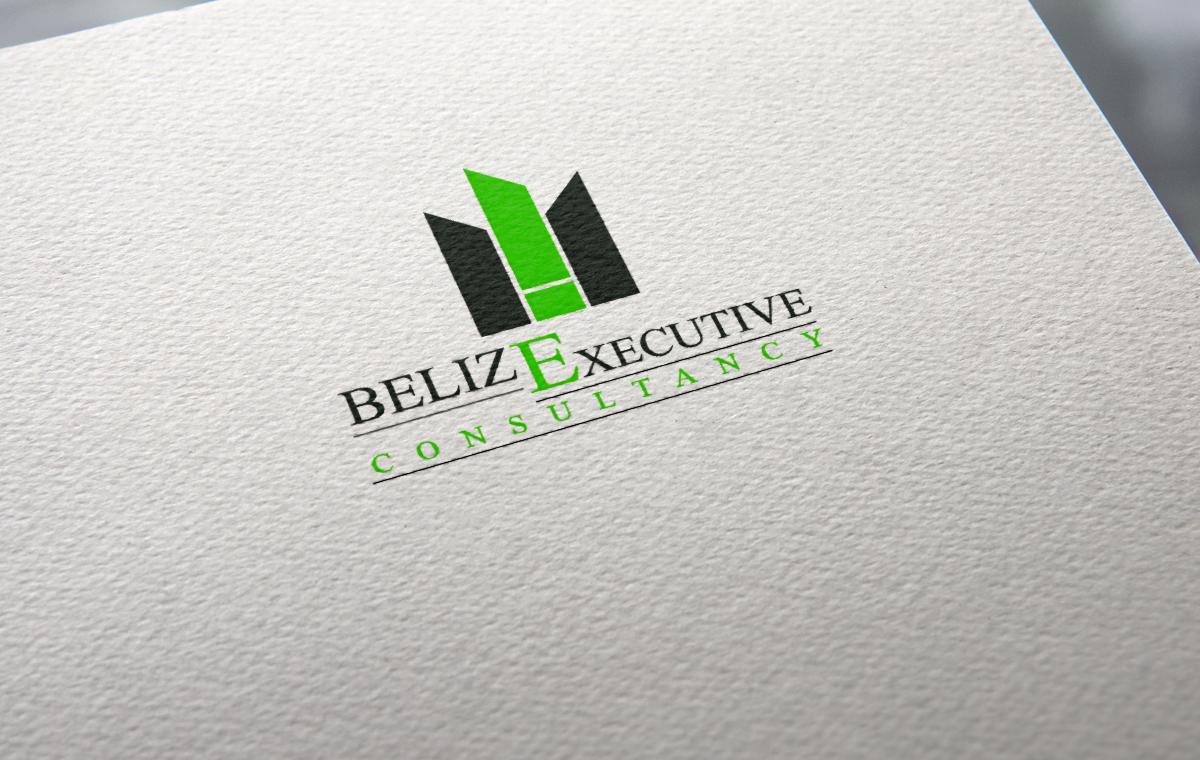 Belize Executive Consultancy Logo portfolio item