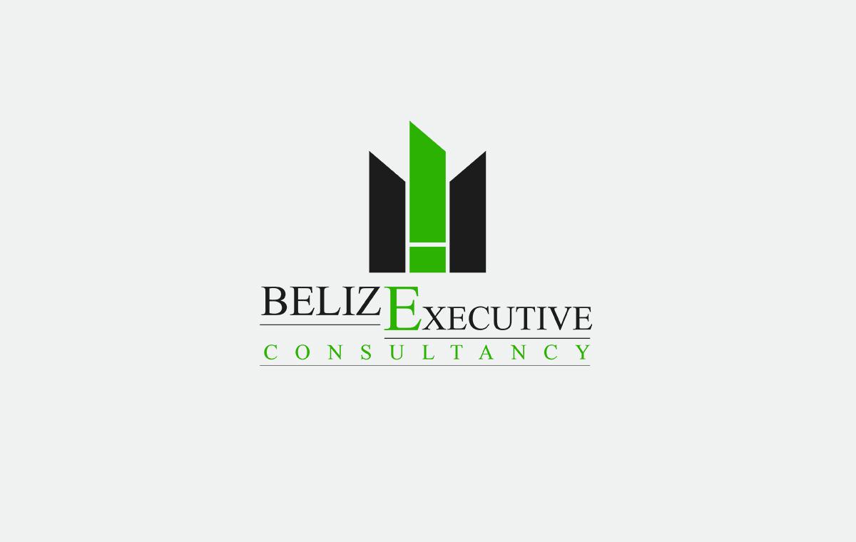 Belize Executive Consultancy Logo graphic design