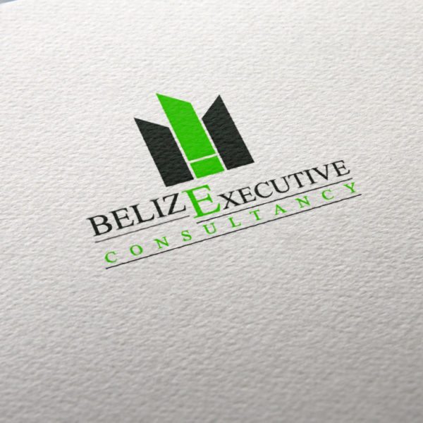 Belize Executive Consultancy Logo portfolio item featured