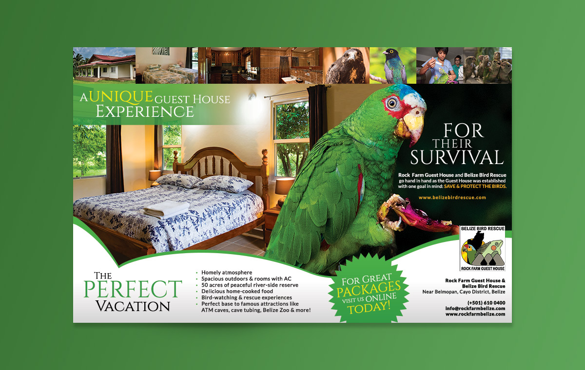 portfolio-item-belize-bird-rescue-magazine-ad0