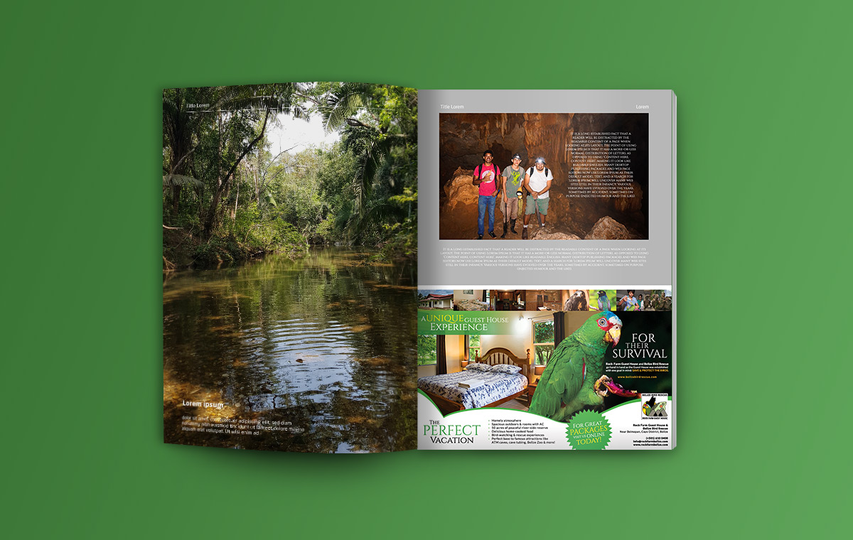 portfolio-item-belize-bird-rescue-magazine-ad1