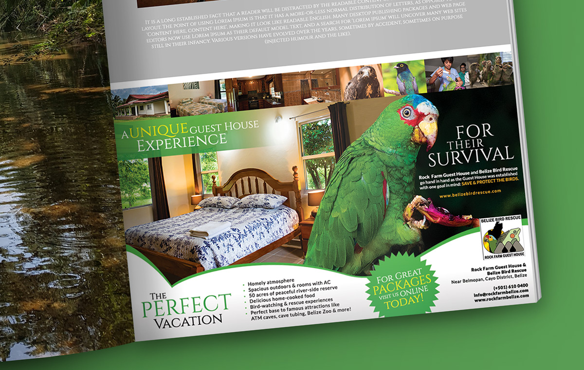 portfolio-item-belize-bird-rescue-magazine-ad2