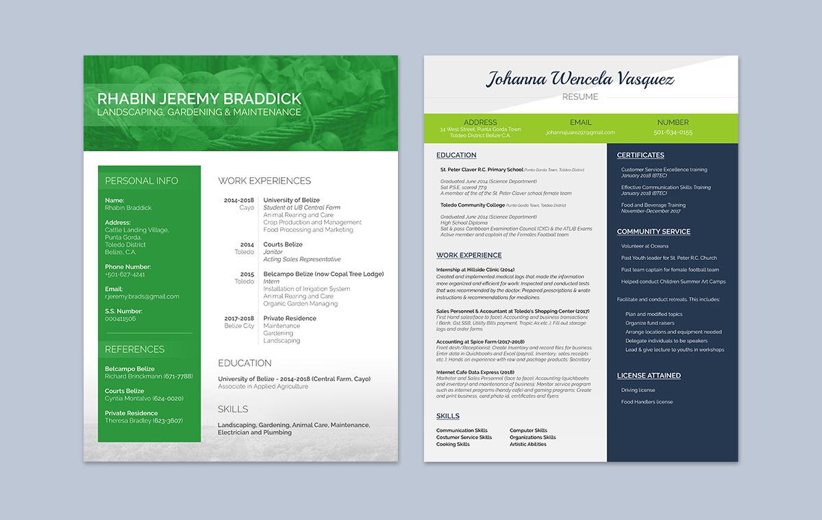 portfolio-item-resume-design0