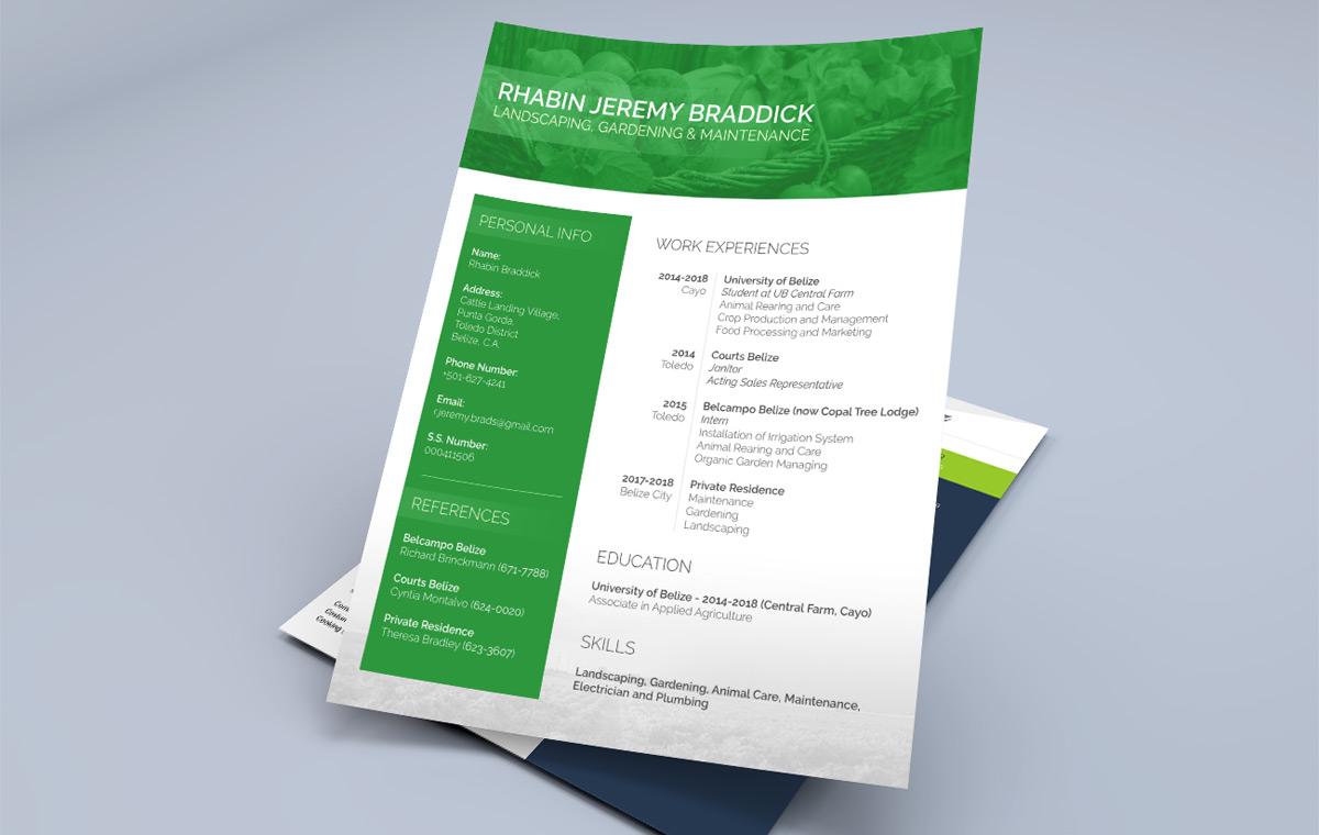 portfolio-item-resume-design1
